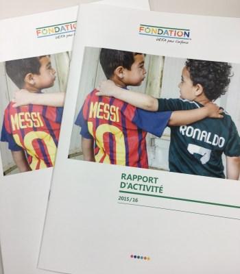 Activity report 2015-16